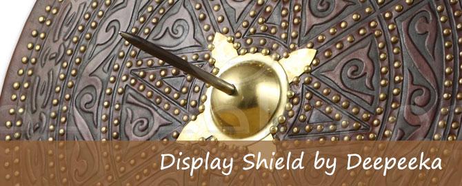 Display Shields